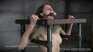Willow Hayes - Shy Small Tits Brunette In Bondage Pain