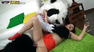 Panda shows teenie his pink strapon dildo